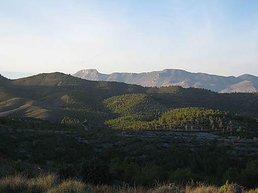 Naturistische Natuur Camping en B&B El Zorro (4)