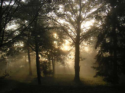 Nature et Amitié d'Ebreuil