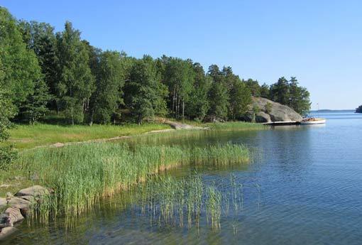 Skeppsmyra Naturist Camping SNN (2)