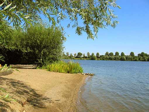 Naturisten vereniging De Maasplassen (2)