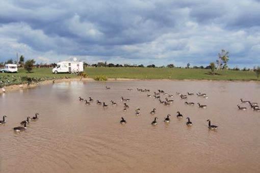 Lakeside Farm (2)