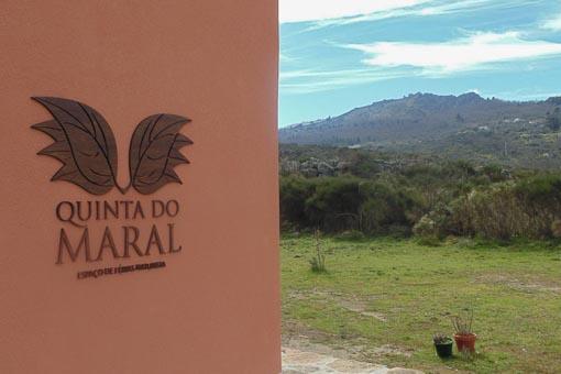 Quinta do Maral (17)