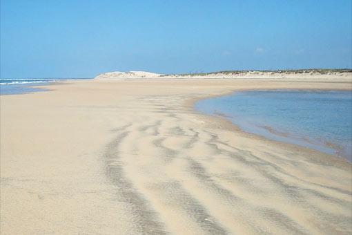 La Grande Plage (Île d'Oléron)
