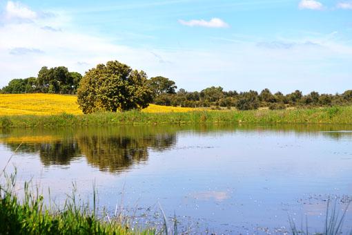 O Nosso Mundo Naturista - Receptie met groot terras met uitzicht op het nieuwe zwembad en het meer - Een van de drie houten lodges, ruim van opzet met groot overdekt terras. Veel privacy en prachtig uitzicht - Heerlijke ligbedden bij eigen terras - Eigen