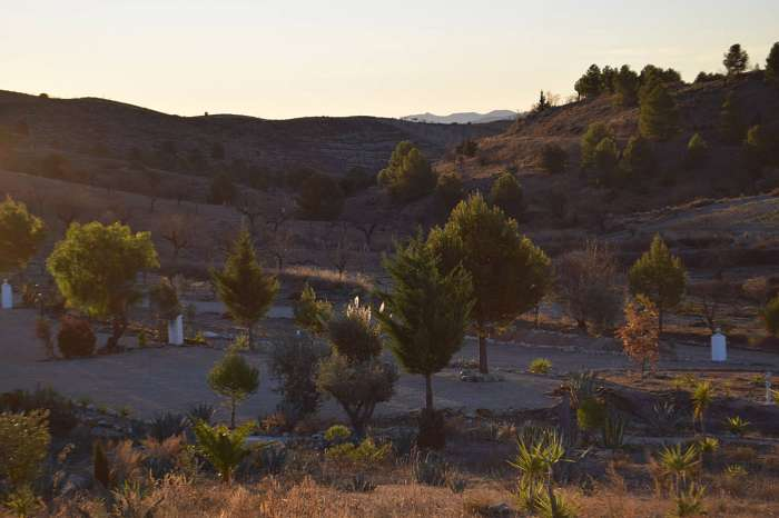 Naturistische Natuur Camping en B&B El Zorro (7)