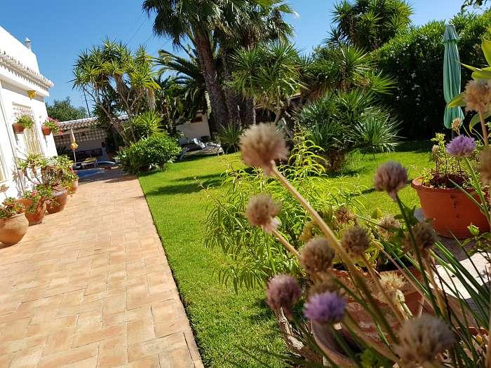 Ron en Diana - Casa Amarela - Portugal Naturally (4) - Prachtige bloemen en bomen in overvloed