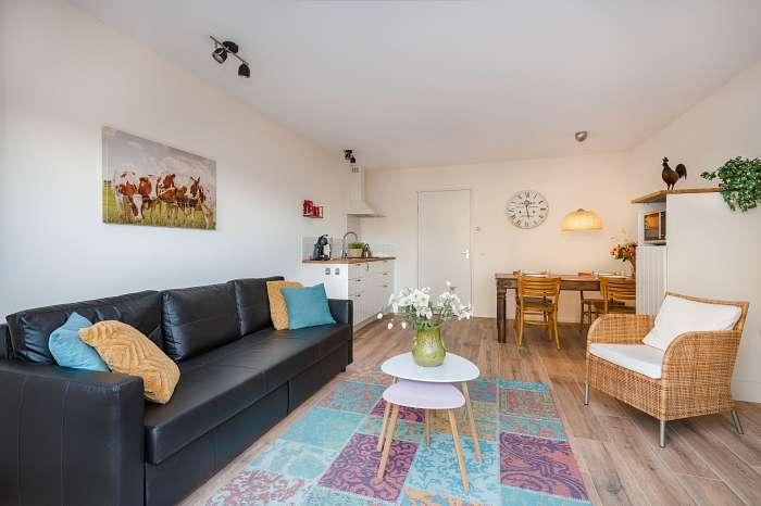 Het Reterink - In wat ooit een koeienstal was, zijn nu vijf luxe vakantiewoningen - Afgescheiden eigen terras met tafel, stoelen en zonnestoelen - Grote kamer met keuken en comfortabele tweepersoons slaapbank