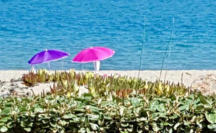 Janny en Wim Peeters - Camping Naturiste Ulysse Leucate - Onze parasolletjes wachten geduldig op ons. Zicht vanaf ons terras