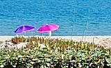 Onze parasolletjes wachten geduldig op ons. Zicht vanaf ons terras