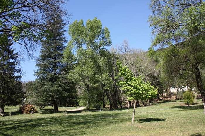 Château de Féreyrolles Naturiste: Camping & Bungalows (4)