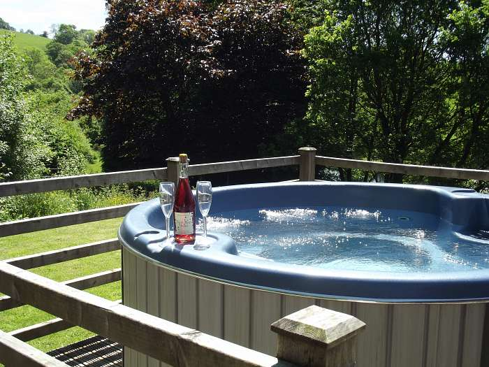 Meadow View & Cefn-nant - Private hot tub with small lawn in Cefn-nant lodge sleeping 4