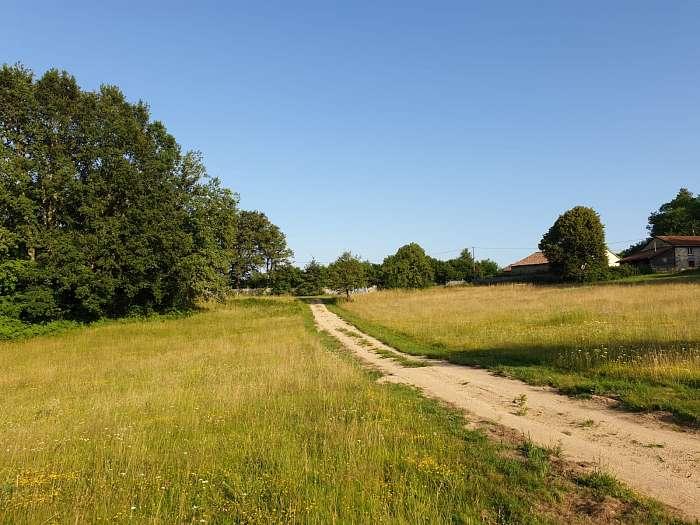 Domaine naturiste Petits-fours - Bosplek - Terrein