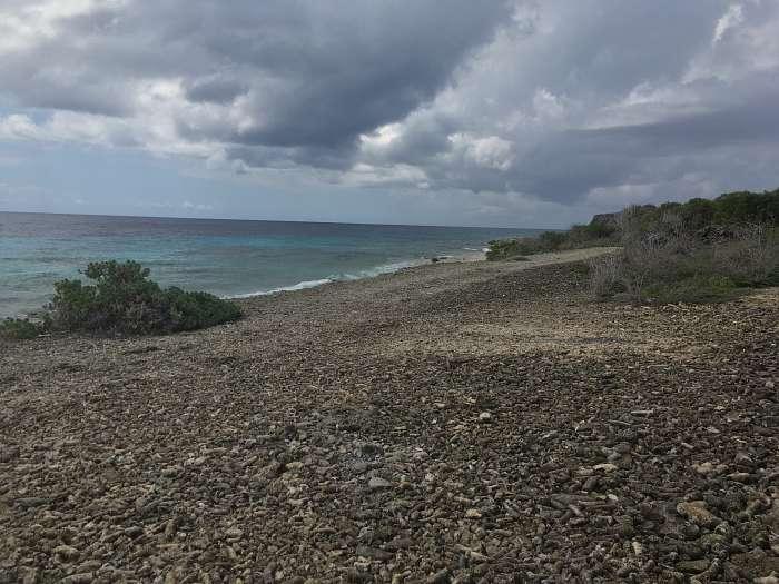 Dutchies - Playa Largu