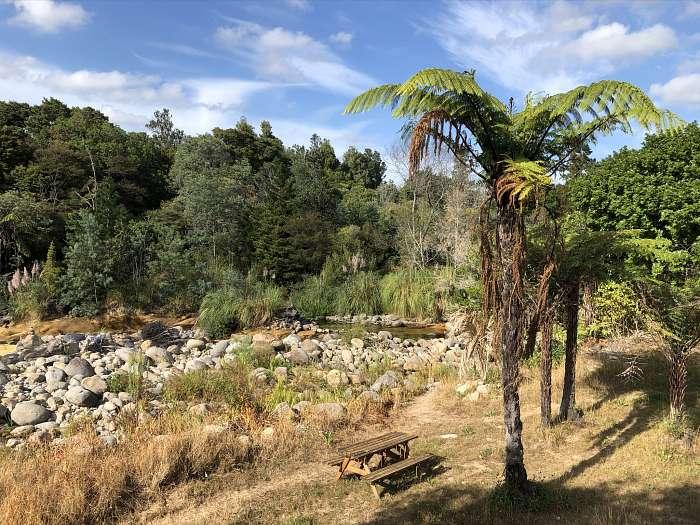 Ben en Marjan - Katikati Naturist Park (2)