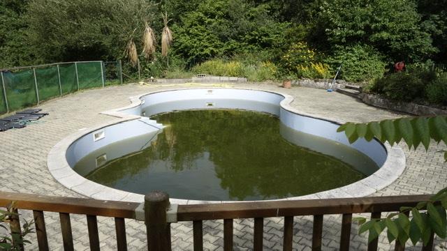 Van Dijk - Pallieter - Zwembad 3 juli 2020 Pallieter