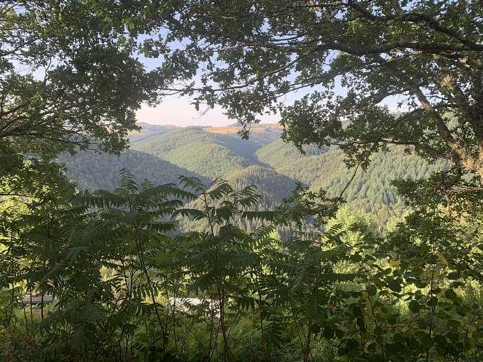 La Taillade - jean-pierre lehr