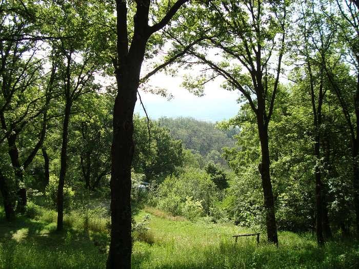 Camping naturista Ca' le Scope (3)