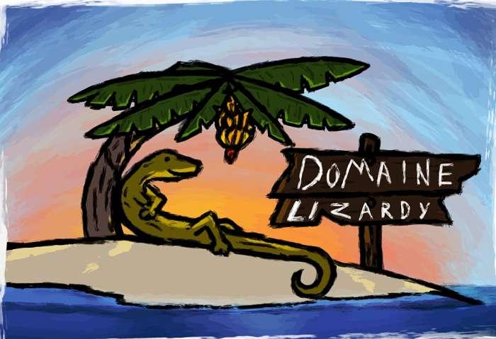 Domaine Lizardy (2)